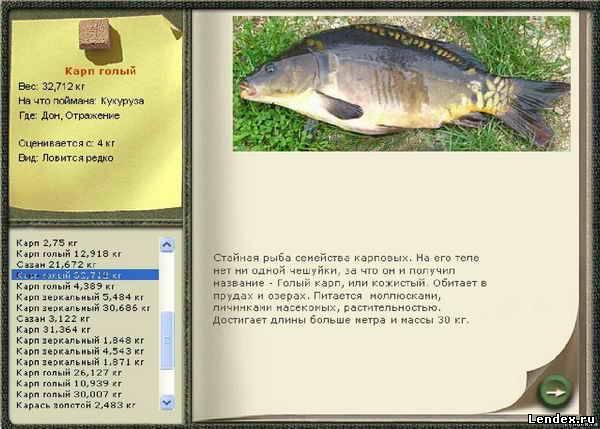 как и на что поймать рыбу карася