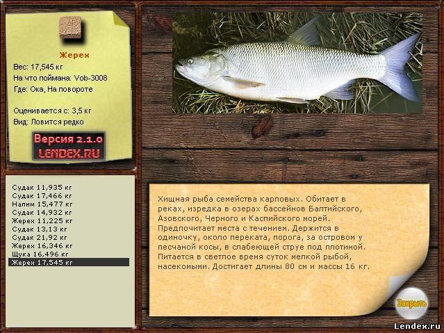 рыбалка на оке жерех
