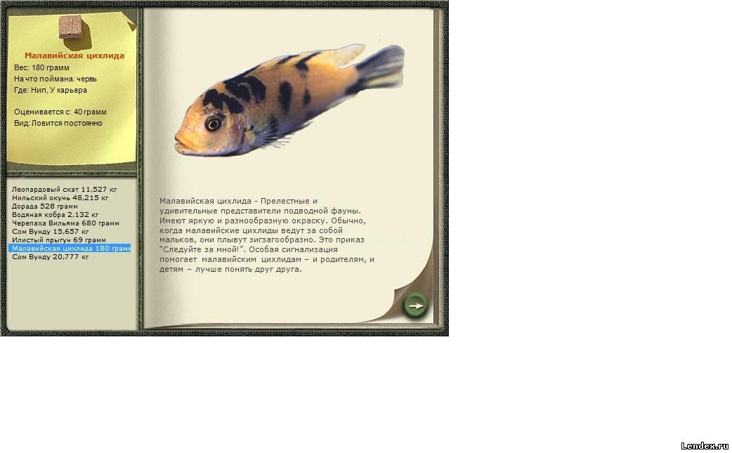 знакомство с русская рыбалка 1 6 3