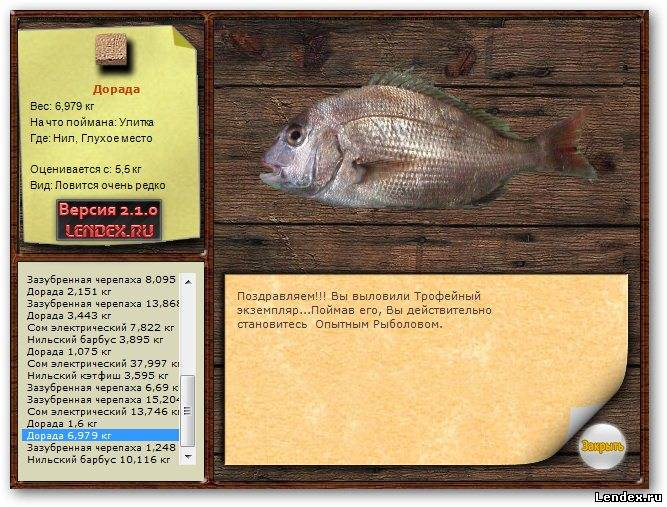 можно ловить рыбу на улитку