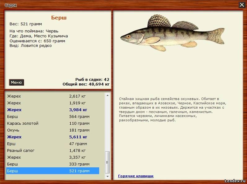 русская рыбалка дема
