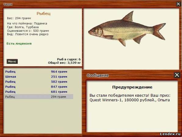 наживка для рыбы на дону