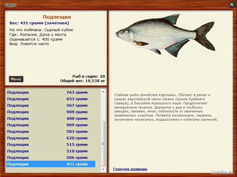 какую рыбу ловят на гороховой