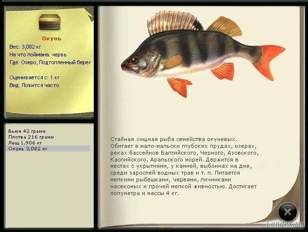 описание рыбной ловли