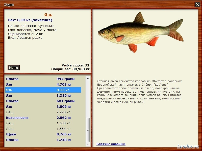 что означает ловить рыбу в речке