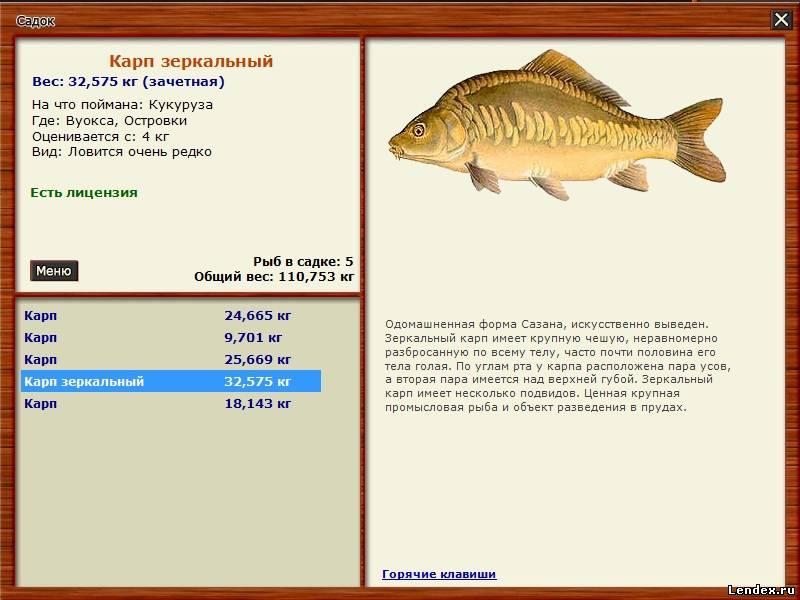 два рыбака поймали 36 рыб решение