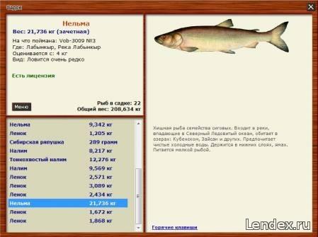 Русская рыбалка 3 как вывести из запоя