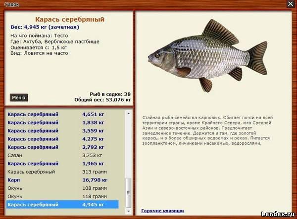 книга для рыбалки все о рыбах и как ловить