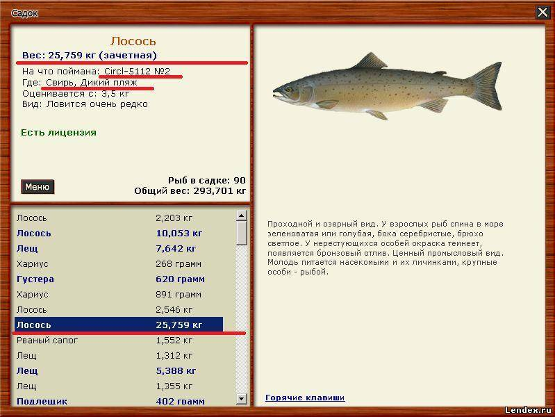 клюет ли рыба во время нереста