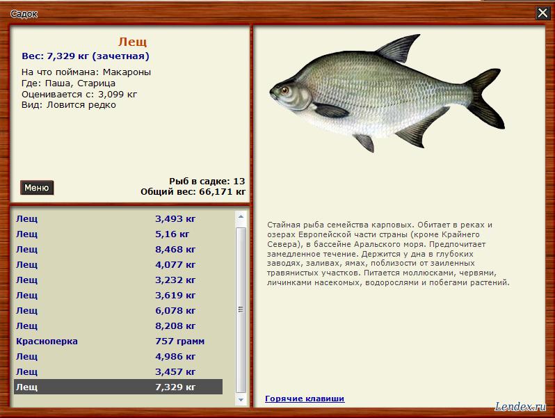 где сейчас клюет рыба