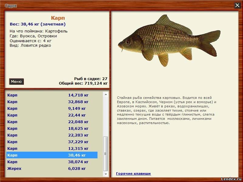 на что клюет каждая рыба