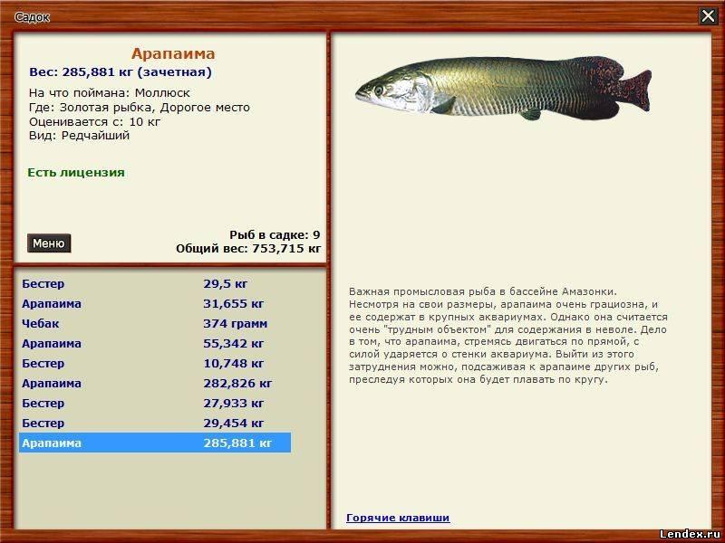 где ловить большие рыбы