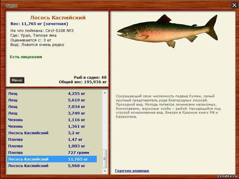 время для рыбалки программа