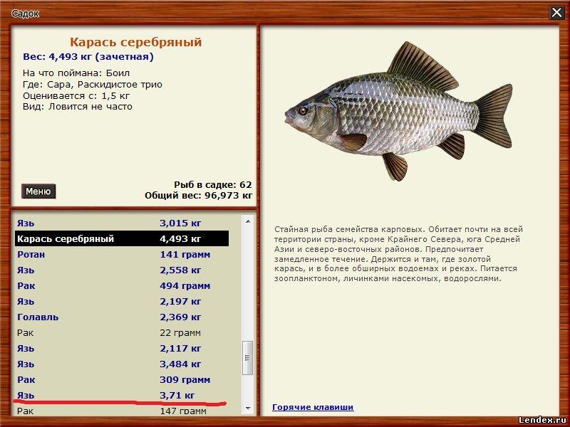 прикормка рыбий пир