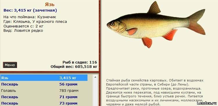 рыбалка 3 лопасня язь