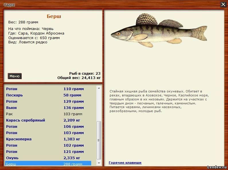 русская рыбалка сара