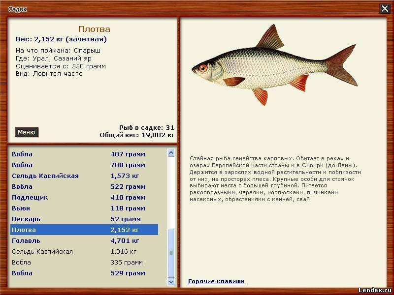 что можно поймать на рыбалке в вов