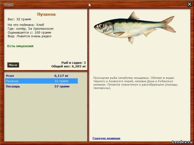 как определить когда лучше ловить рыбу