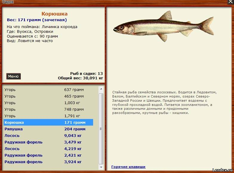 список всей рыбы и на что ловить