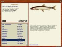 как ловить на кусочки рыбы