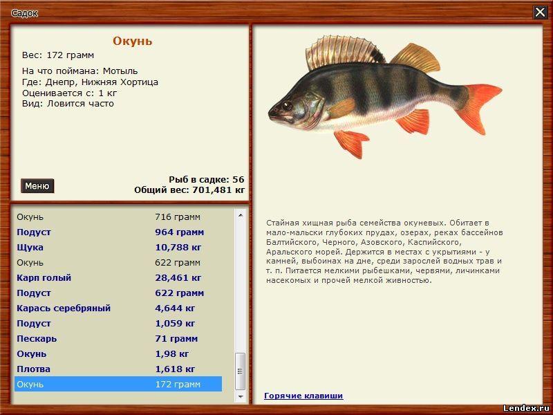 на что клюет рыба на водохранилище