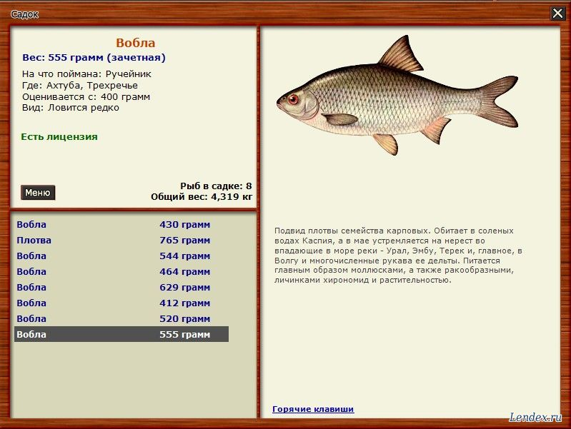 как ловить рыбу на тереке