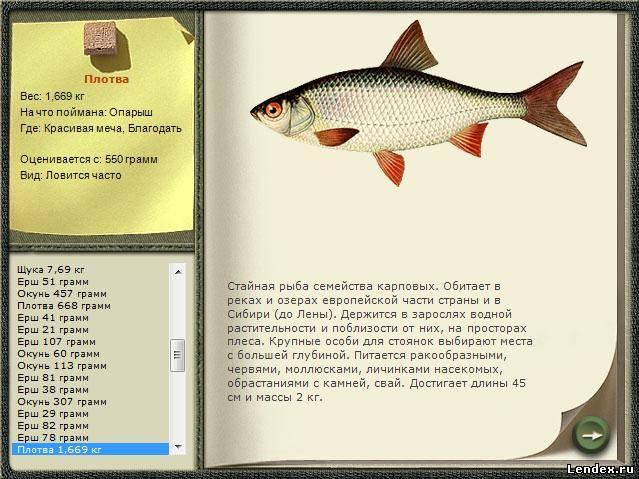 база данных рыбаков