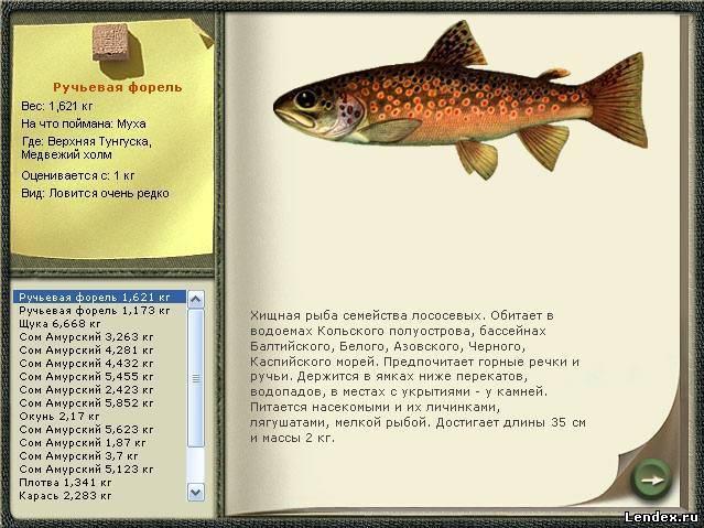 кумжа рыба на что ловить