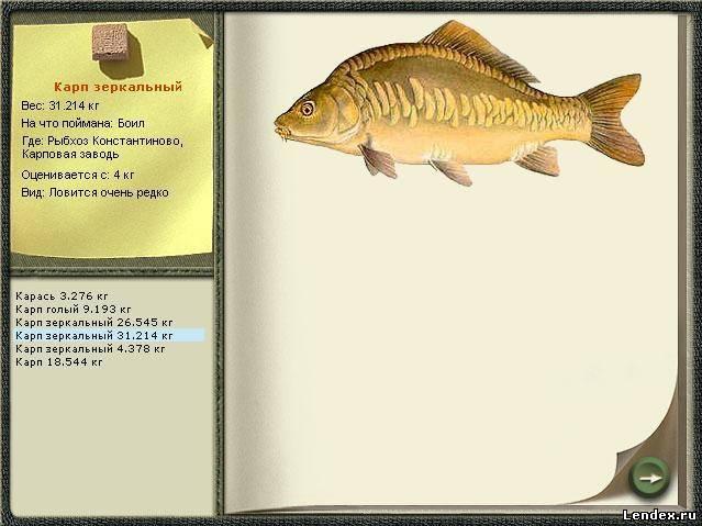 на что ловить сиамского карпа в рыбхозе константиново