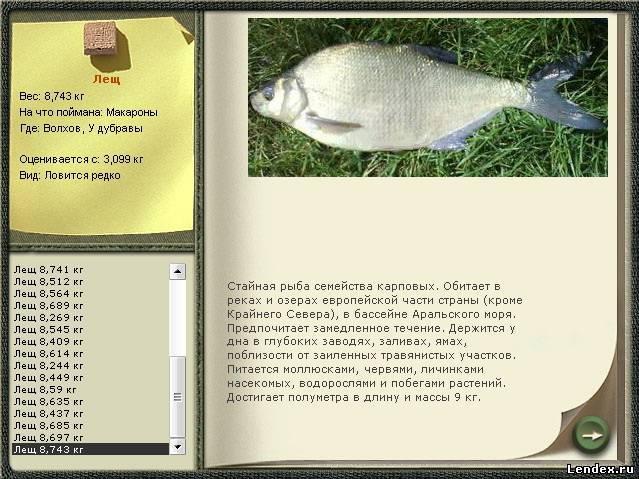 prikormka-dlya-goliy-osman