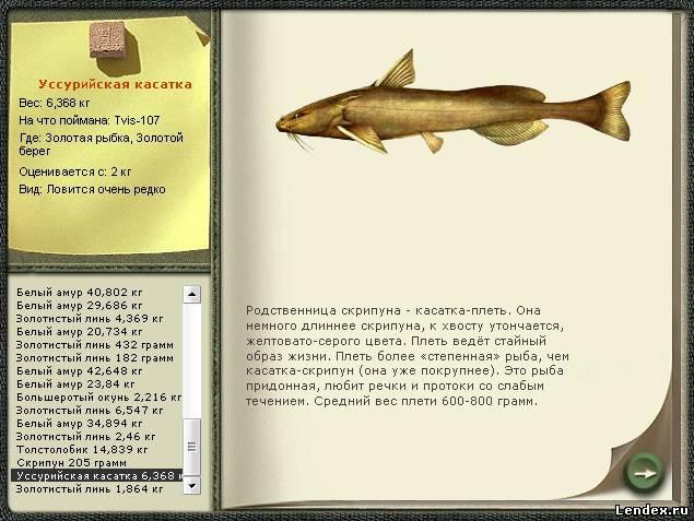 рыбалка 1.6 где ловить угря