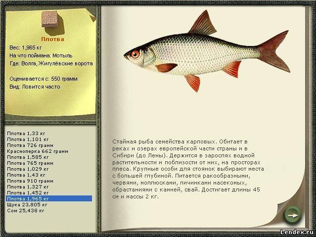 сколько рыбы ловят на волге